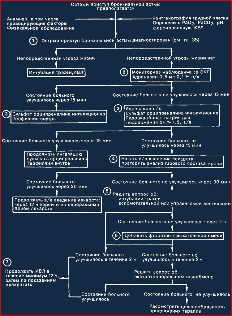 Адреналин при приступе бронхиальной астмы